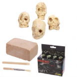 Skulls Dig It Out Kit